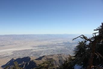 Visiter Palm Springs